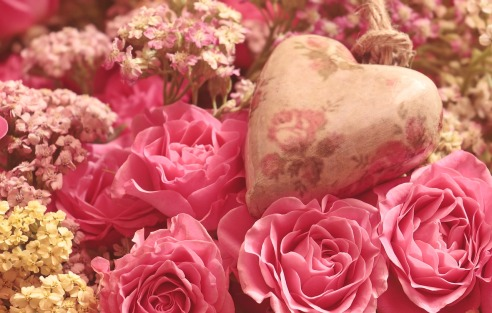 roses-3700007_1280