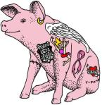 PinkUnderBelly