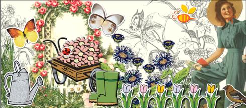flower seed border