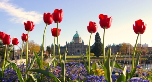 Photo of BC Legislature, Victoria by Deanne Gillespie