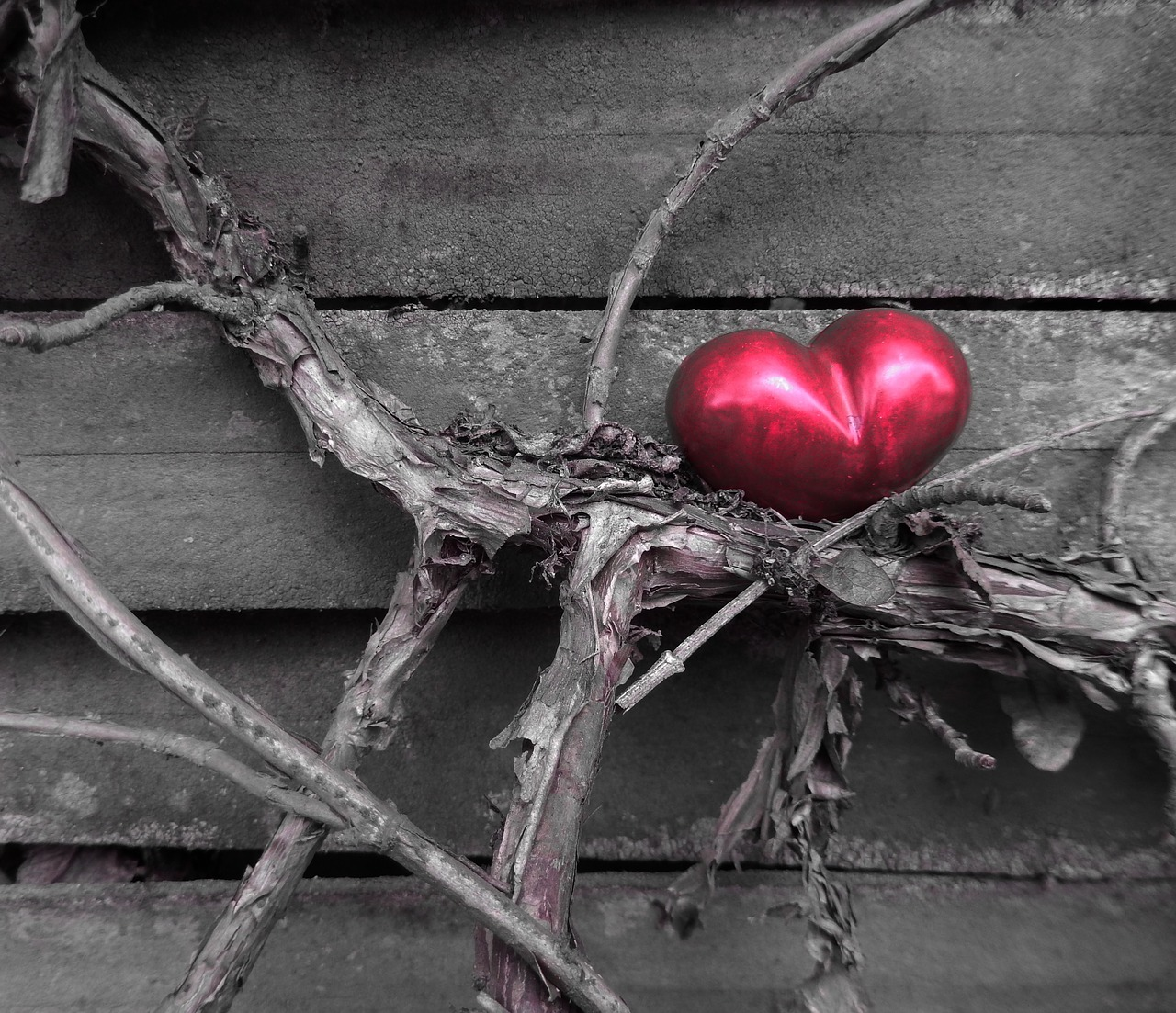 heart-1265200_1280