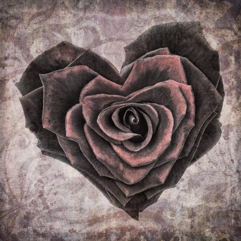 heart-VILUCA-PIXABAY-1205291_1280